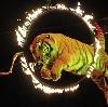 Цирки в Сызрани